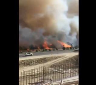 Hatay'da orman yangını: Evlere de sıçradı