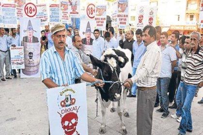 Ak Partililerden inekli protesto