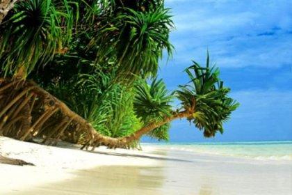 Dünyanın en seksi adaları