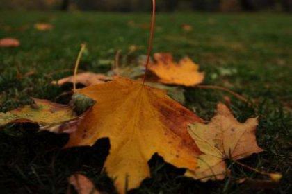 Kaçkar Dağları'nda sonbahar güzellikleri