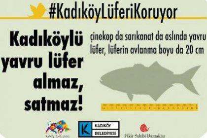 Kadıköy'de Lüferi koruma kampanyası