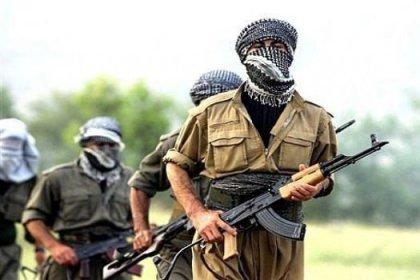 PKK'nın Bingöl planı deşifre oldu