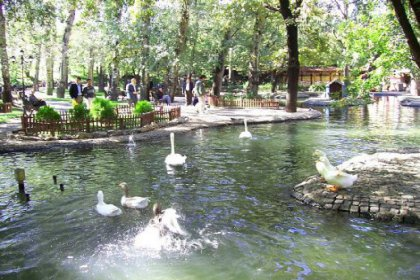 Ücretsiz Ankara turu