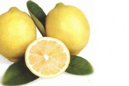 Yılda kişi başı 88 limon tüketiyoruz
