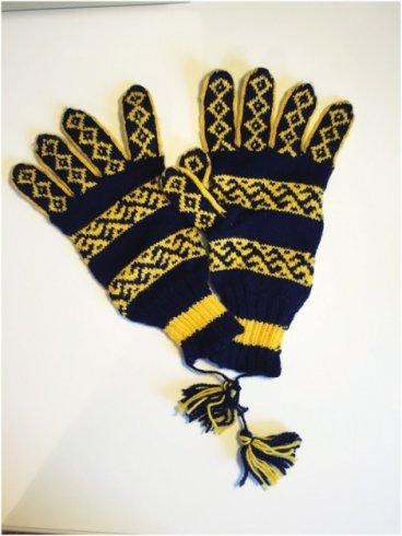 Bir çift eldiven