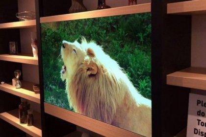 İşte geleceğin televizyonu!