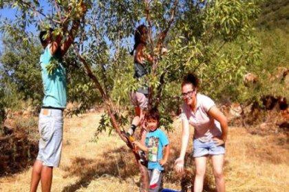 Ücretsiz ekolojik tatil