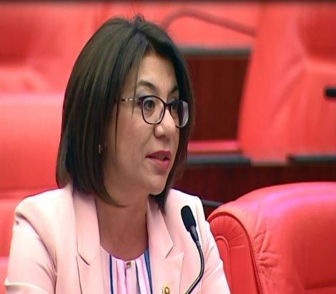 CHP'li Biçer: Değerlerimizi yok etmek isteyen zihniyete geçit vermeyeceğiz
