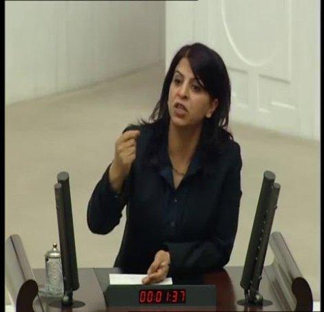 Gözaltına alınan HDP'li vekil Sibel Yiğitalp serbest bırakıldı