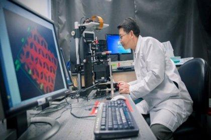 3D yazıcıyla işlevsel damar ağı oluşturuldu!