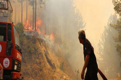 Antalya'da ciğerlerimiz yanıyor