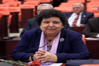 CHP'li Şenal Sarıhan: Şimdi sivil itaatsizlik dönemi başlıyor
