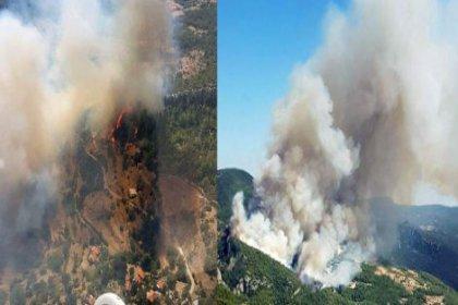 Muğla, Zeytinköy'de orman yangını söndürülemiyor