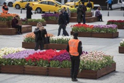 Taksim'deki laleler özel güvenlik ile korunuyor