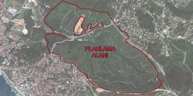Beykoz'daki ormanlık alanı talan edecek şirket, AKP'ye yakınlığıyla bilinen Kalyon İnşaat çıktı