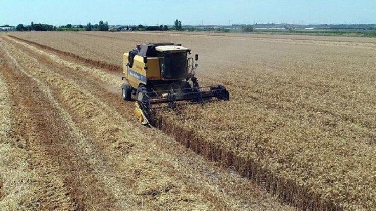 'Çiftçi buğday ekmiyor, aç kalacağız'