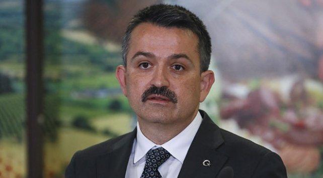 Tarım Bakanı Pakdemirli: Et yerine balık, tavuk, hindi yesek bu iş çözülecek