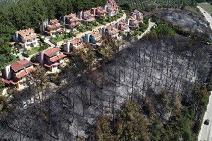 13 günde 98 orman yandı