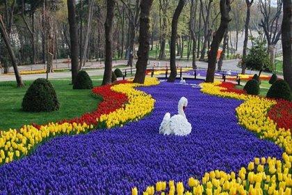 13. İstanbul Lale Festivali başlıyor
