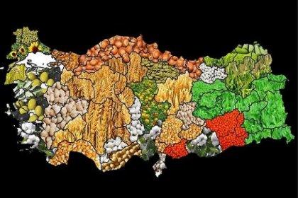 5 tarım ürünü dışında her şey ithal