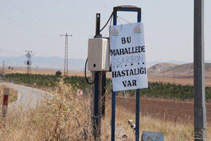 Ankara Valiliği: Mamak'ta şarbon yok