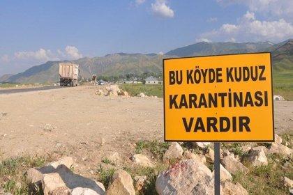 Bakanlıktan 'Balıkesir'de kuduz karantinası' açıklaması