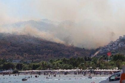 Bodrum'da 23 hektarlık alan kül oldu