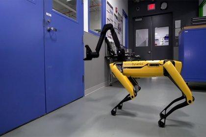 Boston Dynamics'in köpek robotu şimdi de kapıları açıyor