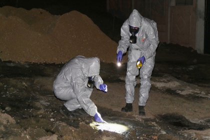 Büyükçekmece'ye dökülen kimyasal atık onlarca hayvana ölüm saçtı!