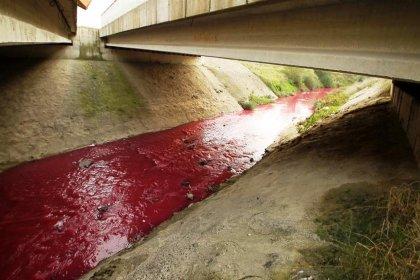 Çorlu Deresi fabrika atıkları nedeniyle 'kırmızı' akıyor