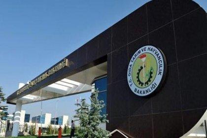 Gıda, Tarım ve Hayvancılık Bakanlığı, nişasta bazlı şeker iddialarını yalanladı