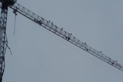 Habersiz işten çıkarılan inşaat işçileri vince çıktı