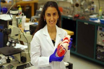 Harvard Üniversitesi Genç Akademi Üyesi seçilen Dr. Canan Dağdeviren, kulübün tarihinde seçilmiş ilk Türk bilim kadını oldu