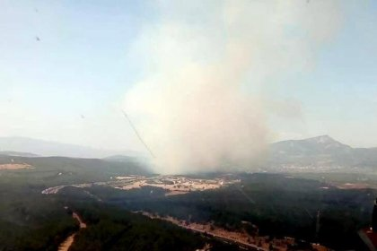 İzmir'in Buca ilçesinde orman yangını