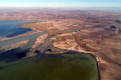 Kanallardan gelen tatlı su, Akyatan Lagünü'nü tehdit ediyor