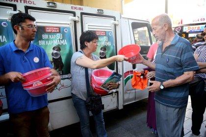 Karşıyaka Belediyesi'nden sokak hayvanları için 'yaz' seferberliği