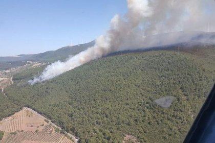 Manisa'nın Soma ilçesinde orman yangını