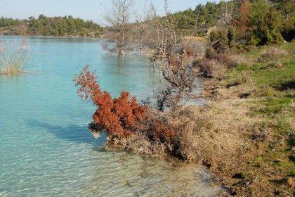 Muğla'da 'asit göleti' tehlike saçıyor!