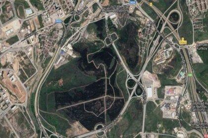 Ormanların üniversiteye tahsisine Anayasa Mahkemesi'nden iptal