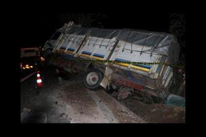 Otomobil park halindeki kamyonete çarptı, çok sayıda ölü var
