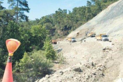 Yazlık sarayın yolu için de 50 bin ağaç kesildi