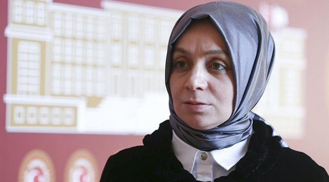 AKP'li Usta: Türkiye'de insan hakları ihlalleri olduğunu söylemek abesle iştigaldir