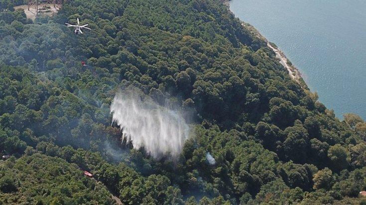 Anadolu Kavağı'nda orman yangını