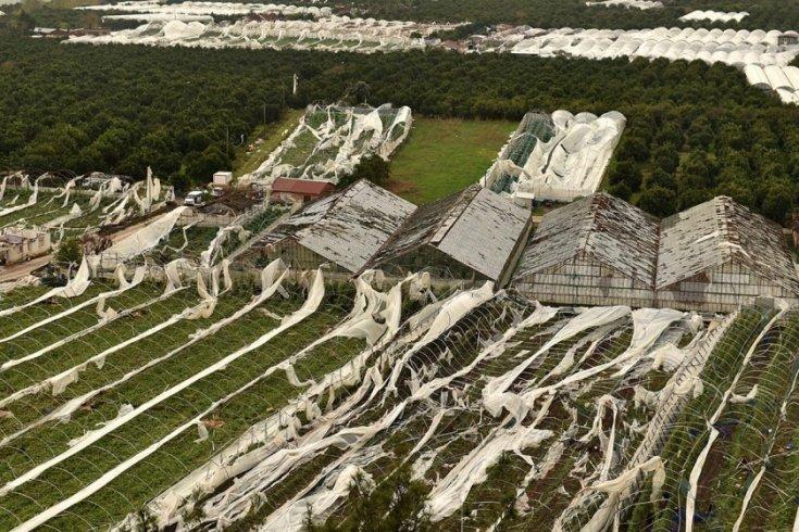 Antalya'daki hortum ve fırtınanın zararı 100 milyon lirayı aştı