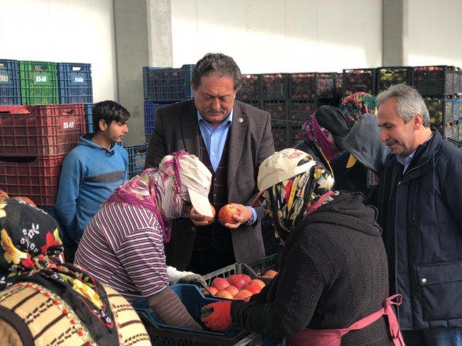 CHP'li Özer: Elma ihracatı durma noktasında