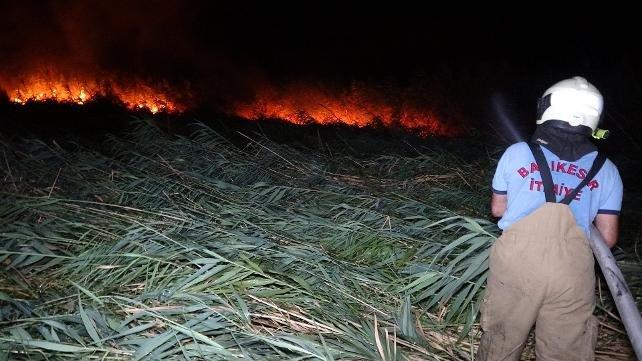 Edremit'te sazlık alanda yangın