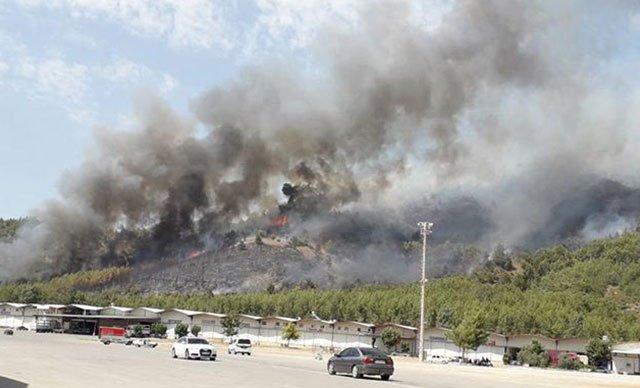 Fethiye'de ormanlık alanda yangın