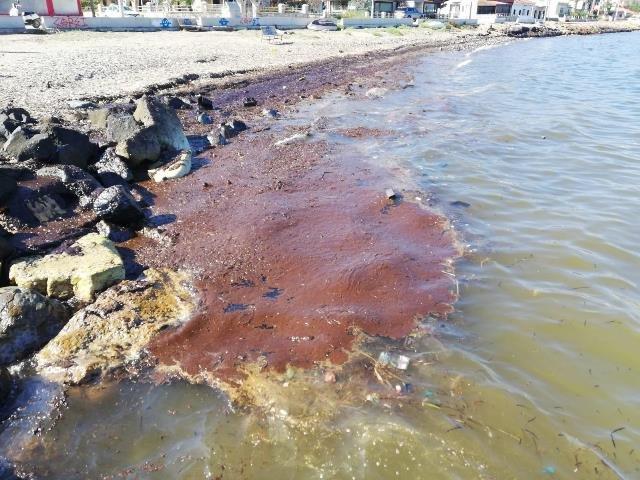 İzmir'de fuel-oil sahile vurdu