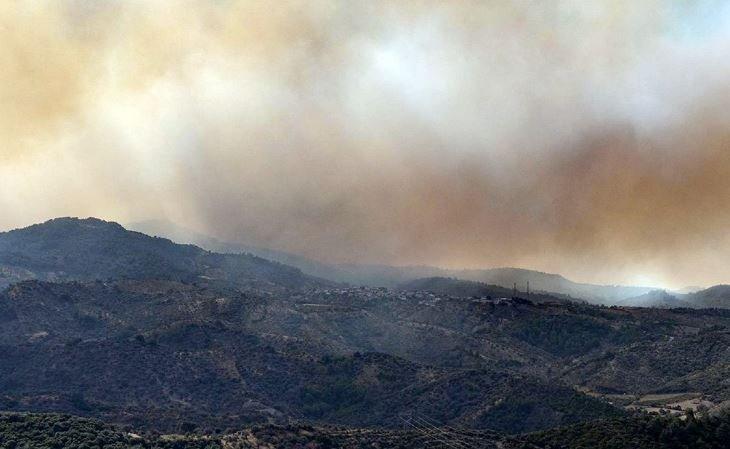 İzmir'deki yangında Karşıyaka ilçesi büyüklüğünde bir orman alanı yandı