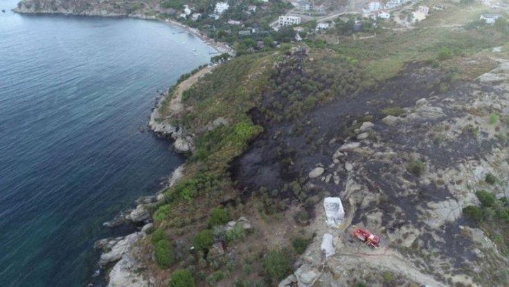 Marmara Adası için 'ağaçlandırma seferberliği' başlatılacak